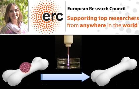 La Dra. Cristina Canal aconsegueix una Starting Grant de l'European Research Council