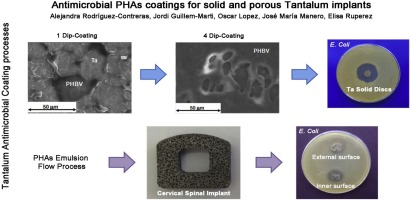 Antimicrobial PHAs coatings for solid and porous tantalum implants