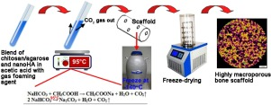 Novel synthesis method combining a foaming agent with freeze-drying to obtain hybrid highly macroporous bone scaffolds.jpg
